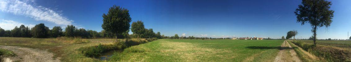 Paesaggio parco